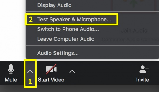 Zoom audio control to test speaker & Microphone