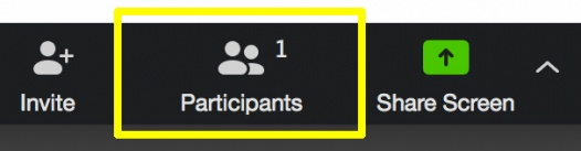 manage participants Zoom icon