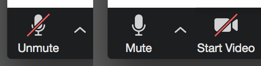 Zoom icons showing mute function